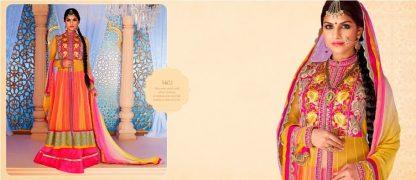 Beautiful Color Coordinated Designer Net Dress Material-0