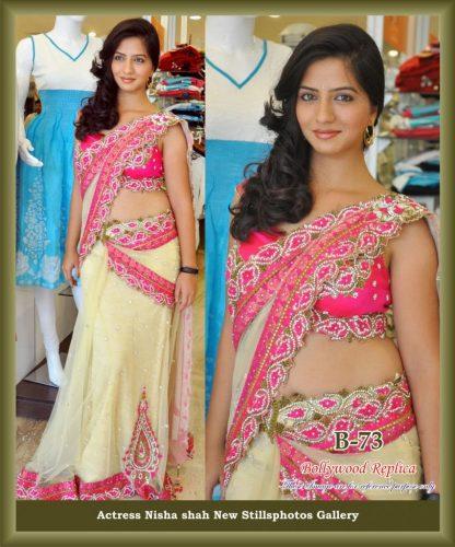 Actress Nisha Shah Wearing a Beautiful Net Saree-0