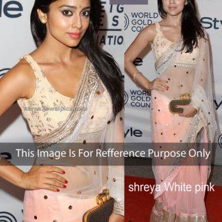 Shreya Saran in Trendy Peach Net Saree-0