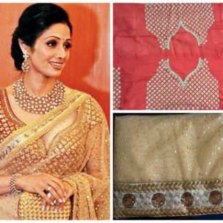 Adorable Sridevi in Striking Net Saree-0