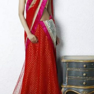 Bold Red Colored Net Lehenga with Golden Blouse-0