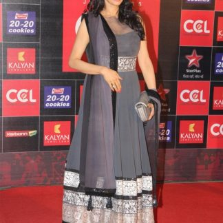 Evergreen Beauty Sridevi in Grey Net Dress-0
